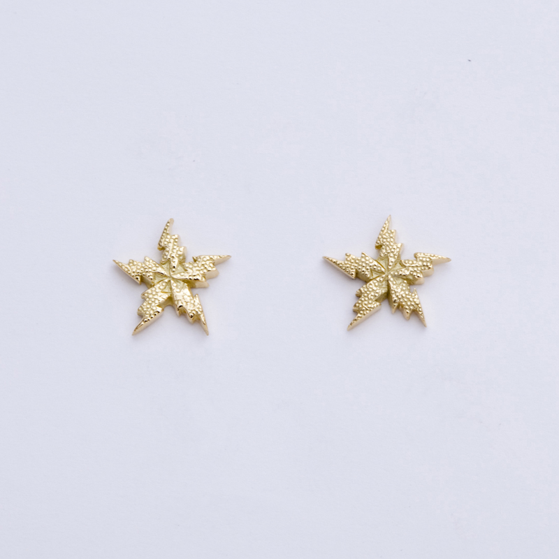 FLASH STAR  pierced earrings